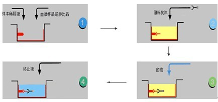 elisa的原理和类型